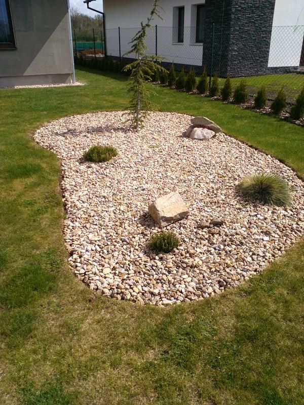 Zahrada a předzahrádka - ještě jeden pinus mugo pumilio-borovice kleč ;-)