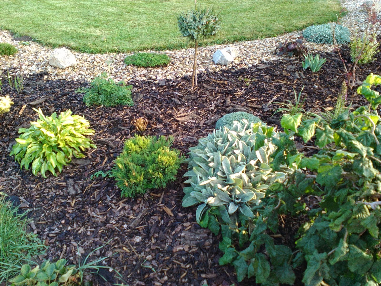 Zahrada a předzahrádka - Obrázek č. 93
