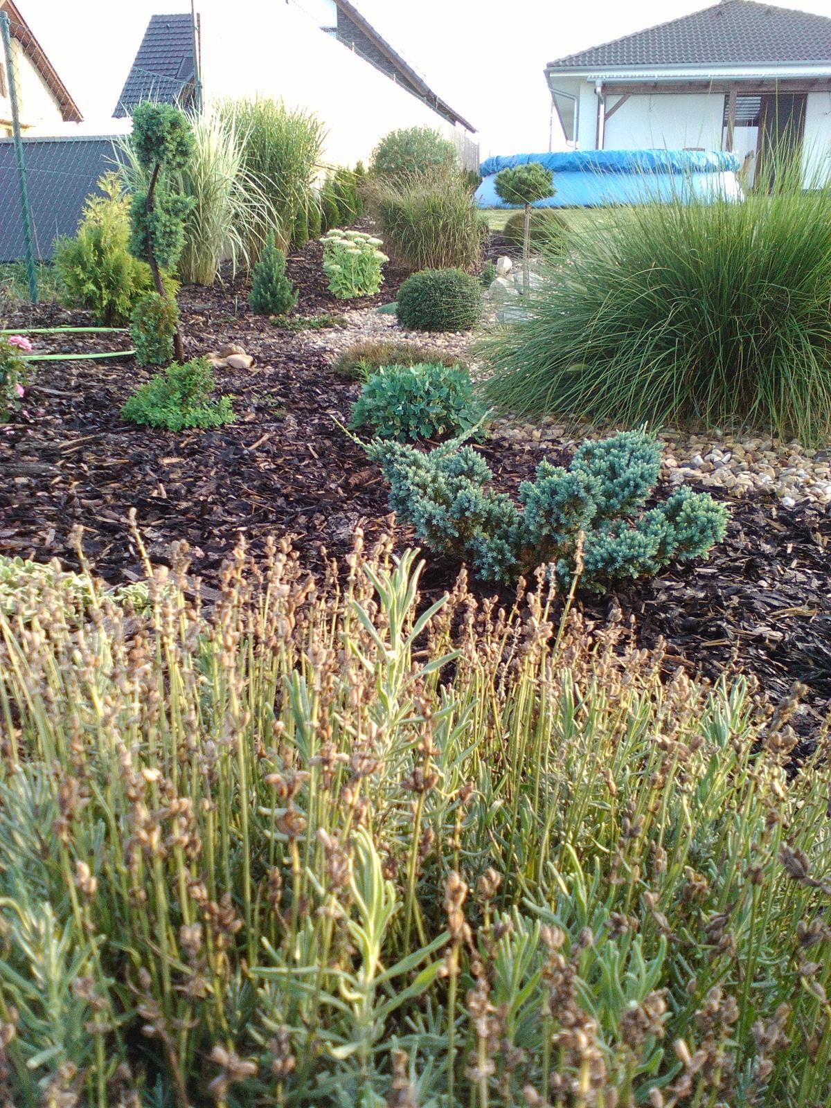 Zahrada a předzahrádka - Obrázek č. 99