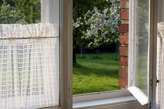jarní výhled z okna