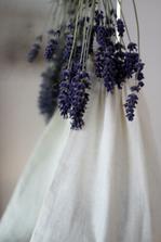 sáček s levandulí na provonění peřin