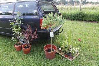 malý nákup v zahradnictví