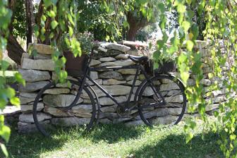 kolo má nové místo