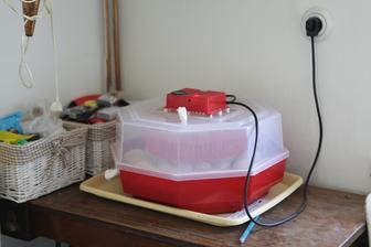 v nové kuchyni stará líheň aby byla nová housata :-)