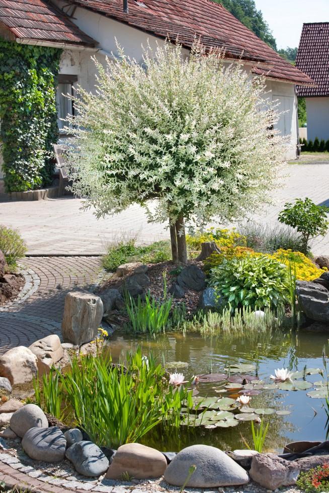 Nápady na zahradu - Obrázek č. 37