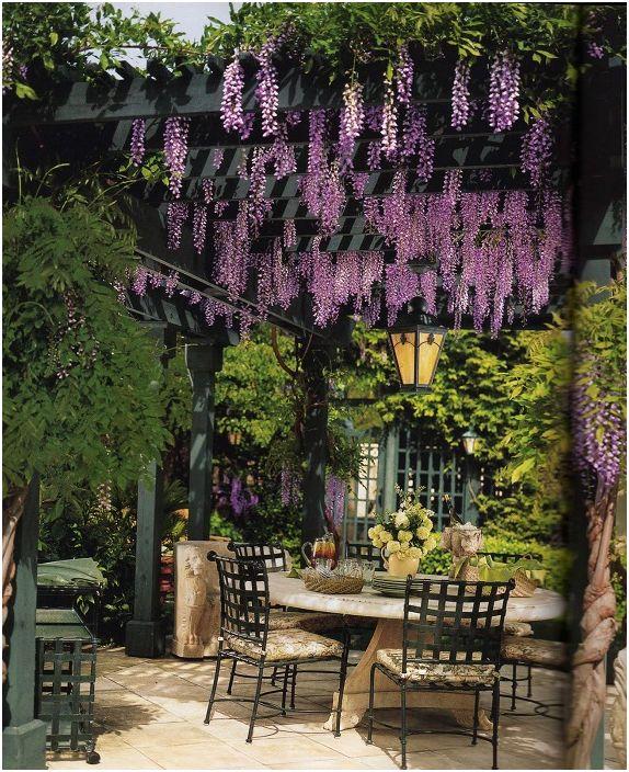 Nápady na zahradu - Obrázek č. 39
