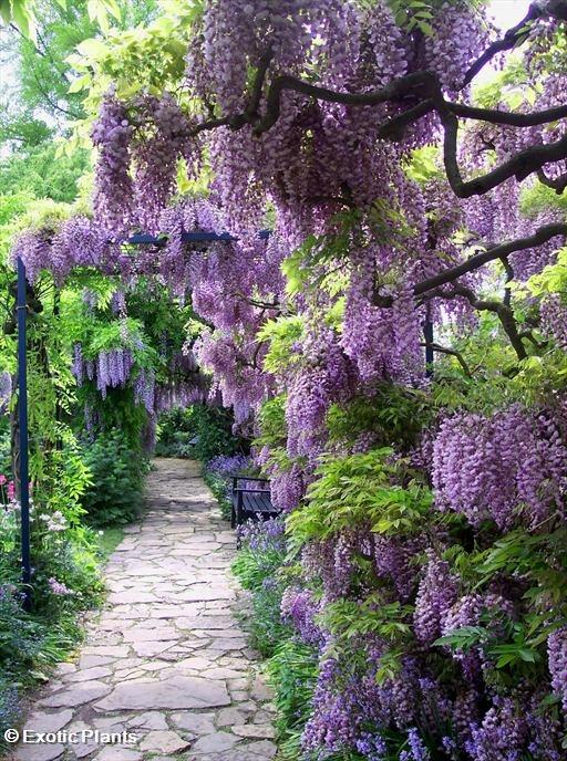 Nápady na zahradu - Obrázek č. 40
