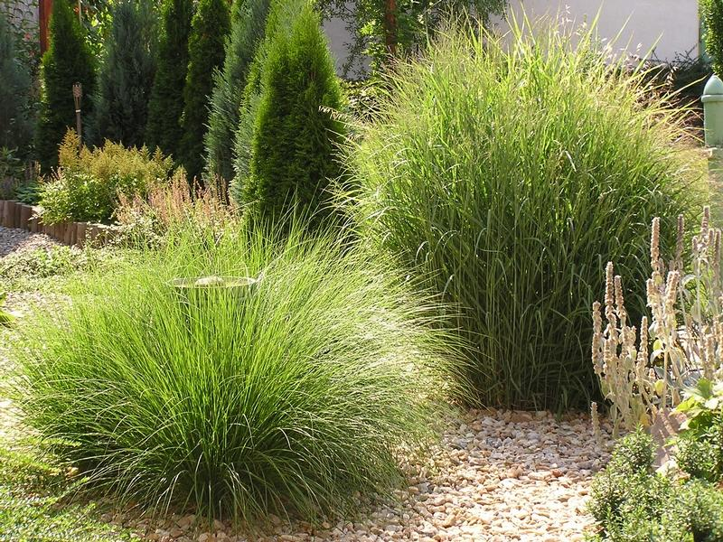 Nápady na zahradu - Obrázek č. 54