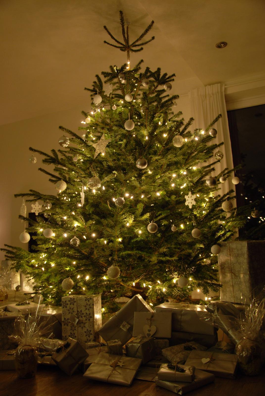 Zařizujeme náš domeček .... - Stromeček letos pro jistotu přivázaný ke stropu;-)