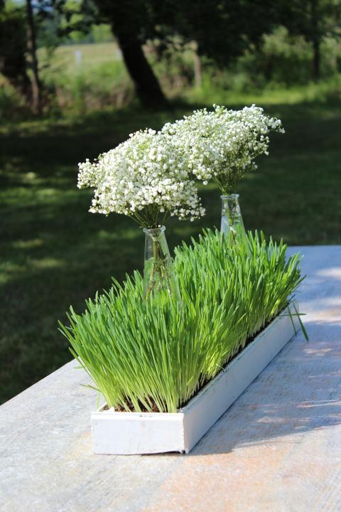L{{_AND_}} R - Osení na venkovních stolech s kytičkami z gypsophily.