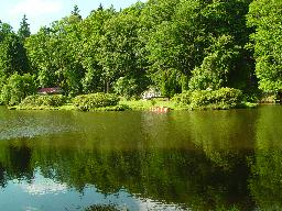 Pohled na zámecký rybník