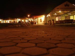 a Pezion pegas v noci