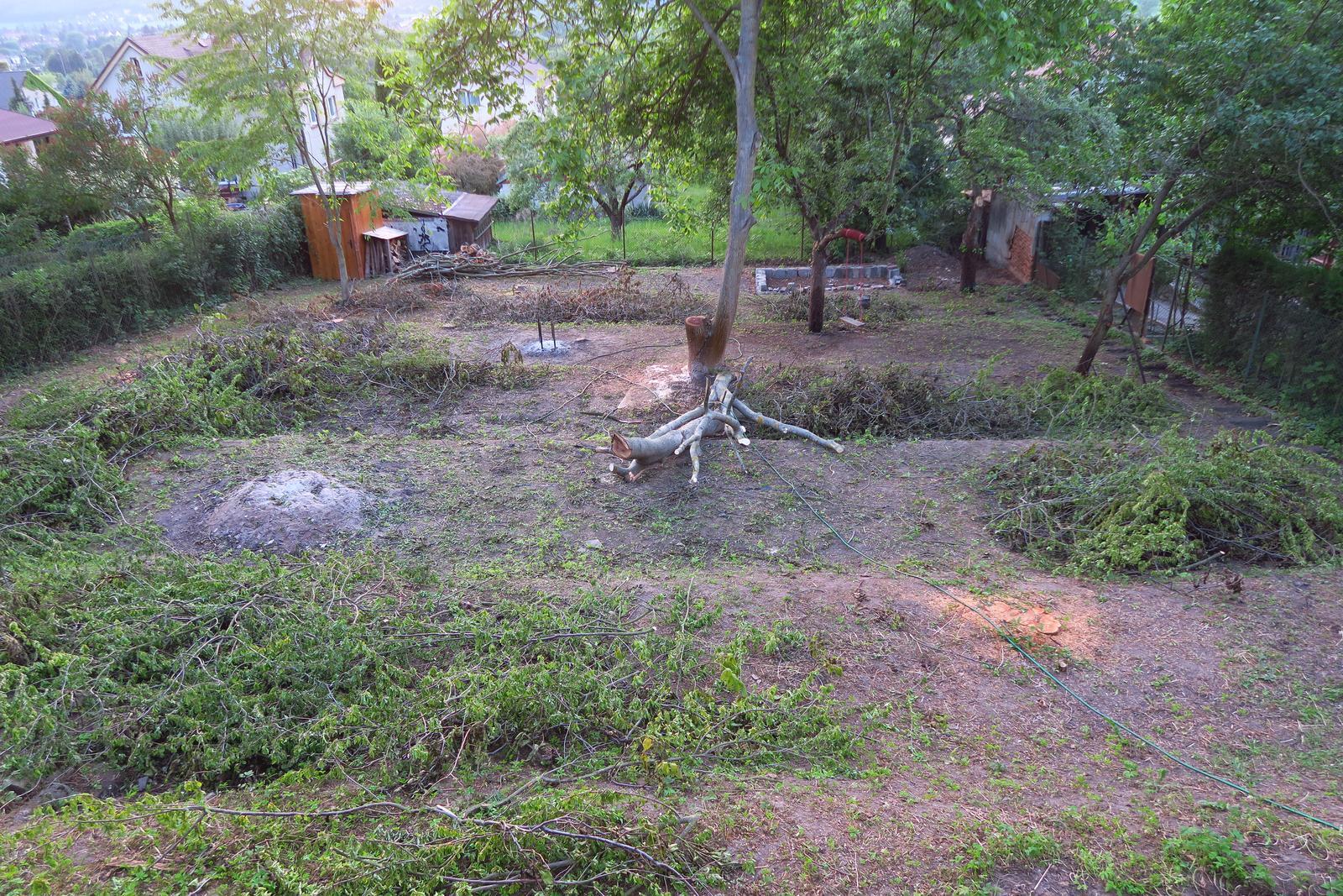 Stavba našeho bungalovu ve svahu - Bohužel všechny stromy musely pryč, ale zbyla nám jedna švestka :-)