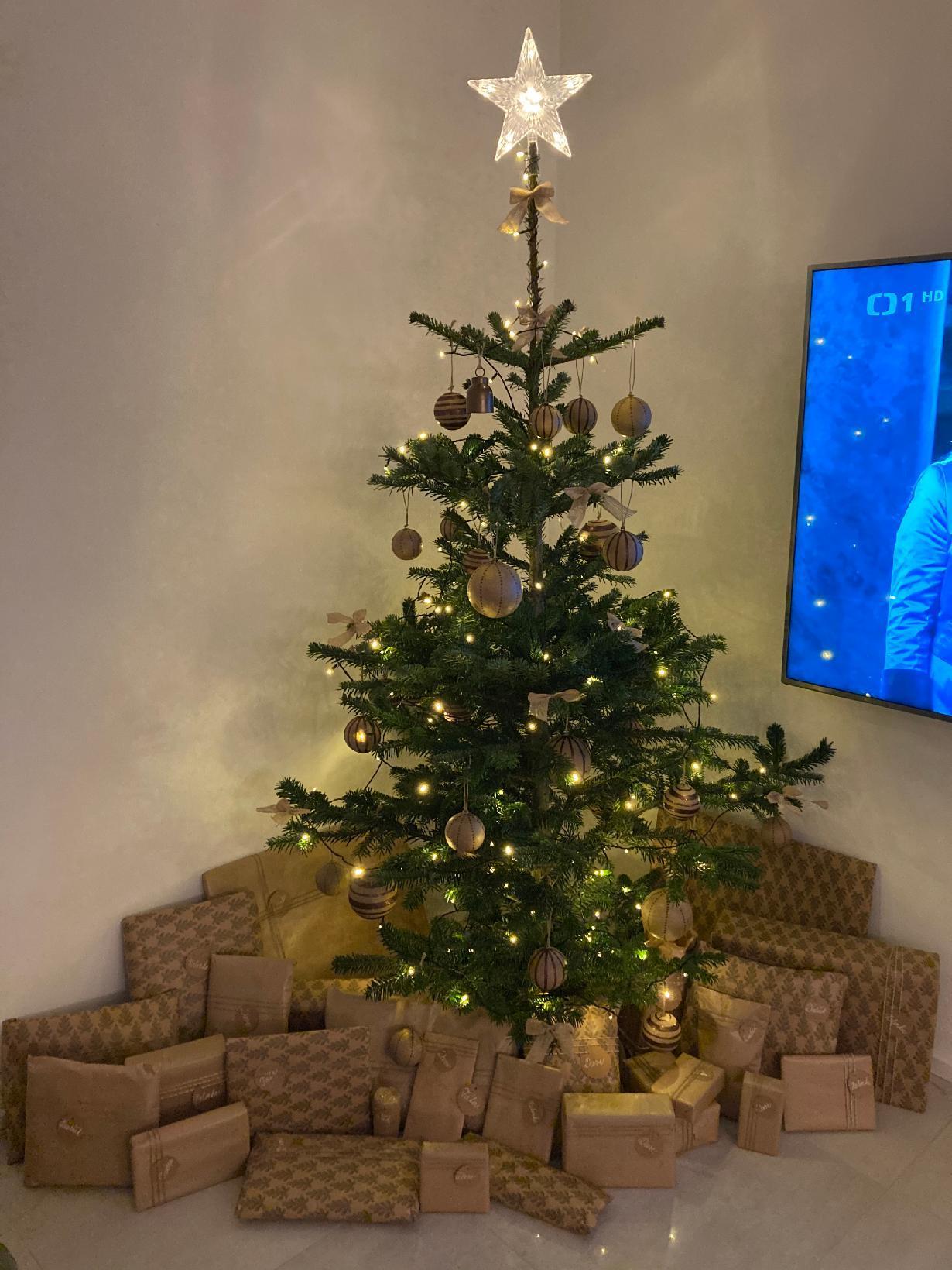 Krásný první svátek vánoční :) - Obrázek č. 2