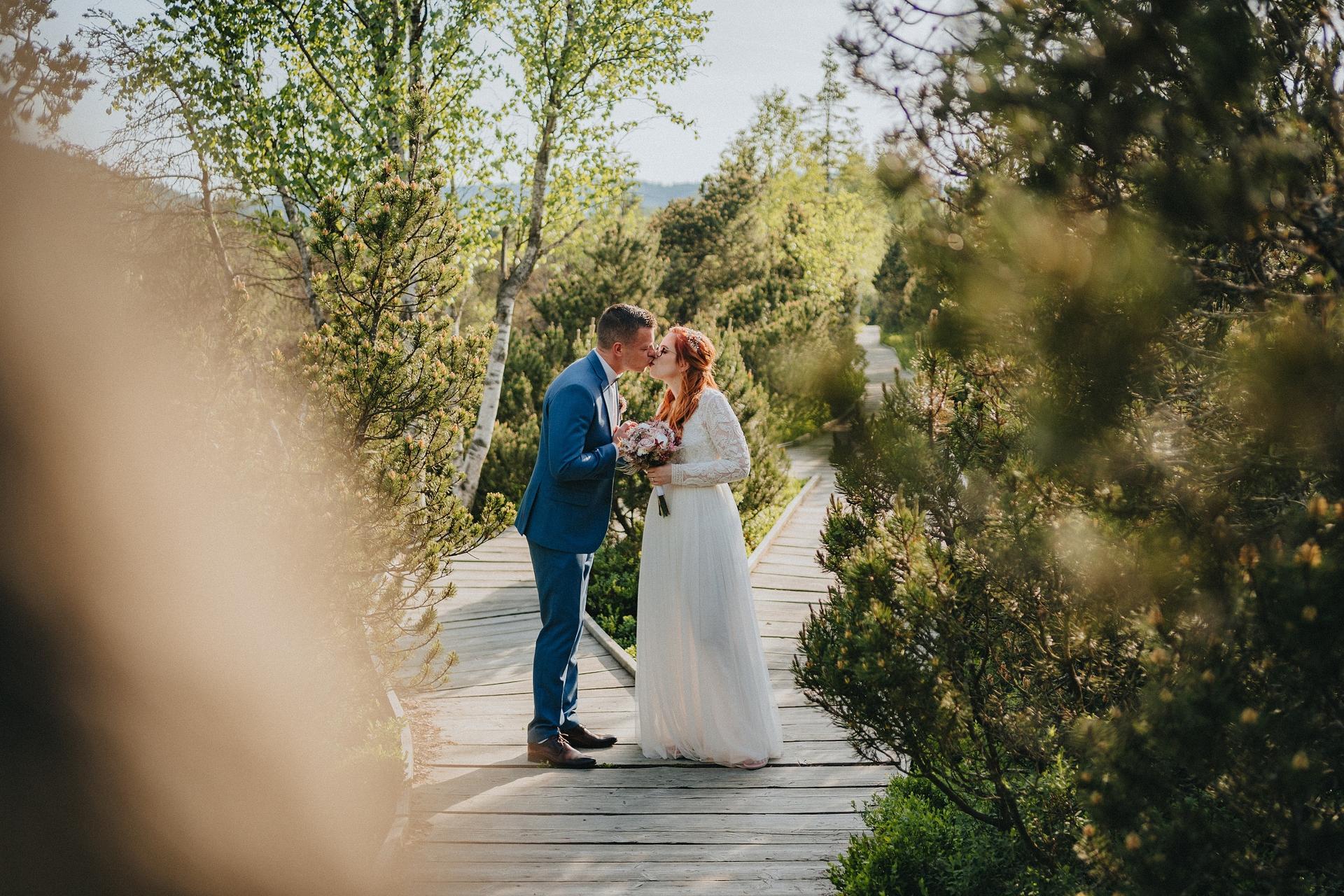 Svatba V&J - Obrázek č. 2