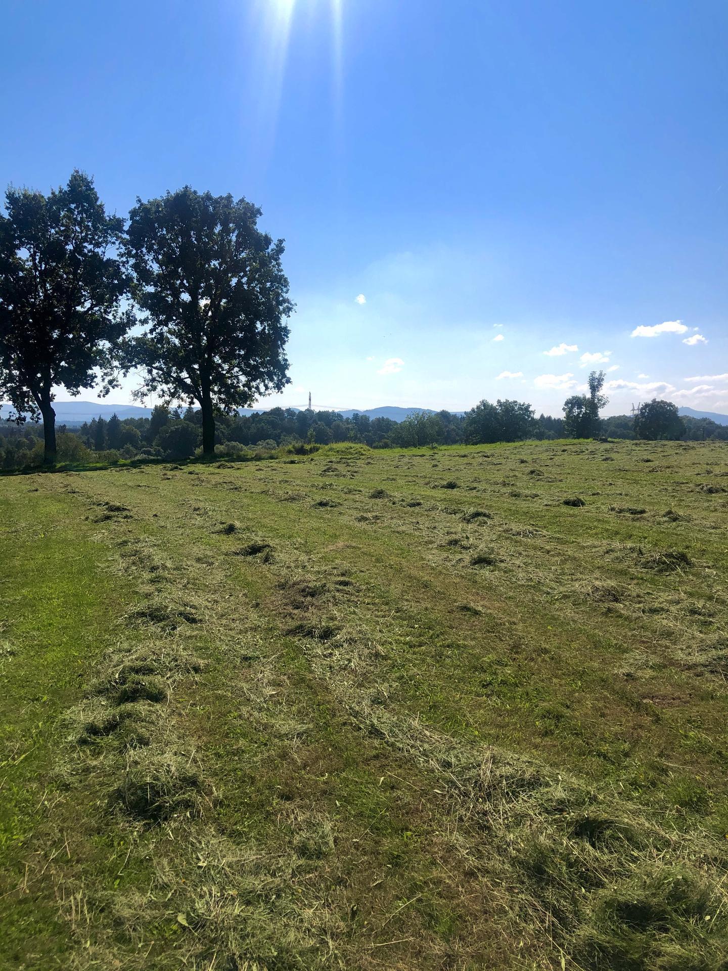 Náš pozemek s výhledem na Beskydy - Záři 2021, na jaře 2022 už pomalinku začneme. 🥳