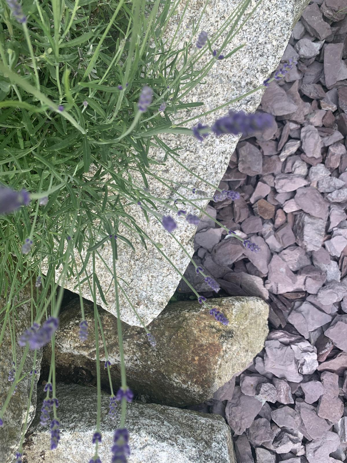 dekoracny kamen - plosky - Obrázok č. 3