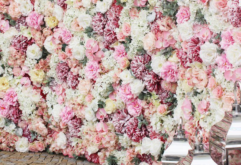 Kvetinová fotostena na prenájom - Obrázok č. 2