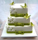 zelena torticka musi byt