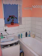 koupelna, děs běs, nic nefunguje, v umyvadle neteče voda a  sprcha taky ne, navíc se začala objevovat plíseň u okna, není ani topení.....