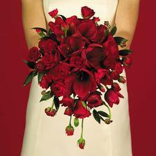 krásné, chtěla bych raději lilie, ale tulipány také nejsou vůbec špatné