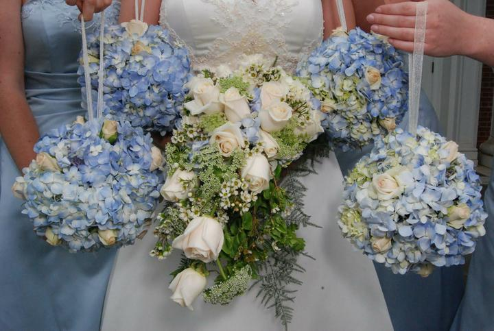 Wedding stuff - hydrangea bouquet, they even have the same bridesmaids dresses :)