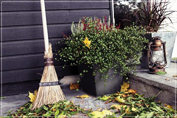 Podzimní inspirace - Obrázek č. 29