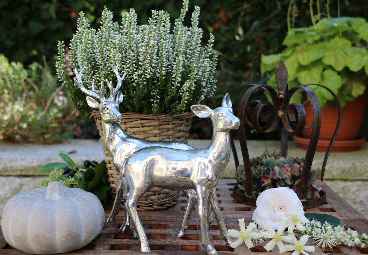 Podzimní inspirace - Obrázek č. 36