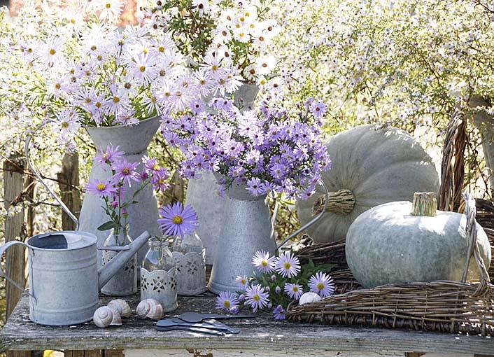 Podzimní inspirace - Obrázek č. 39