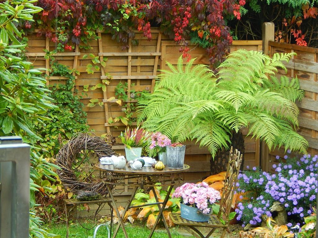 Podzimní inspirace - Obrázek č. 41