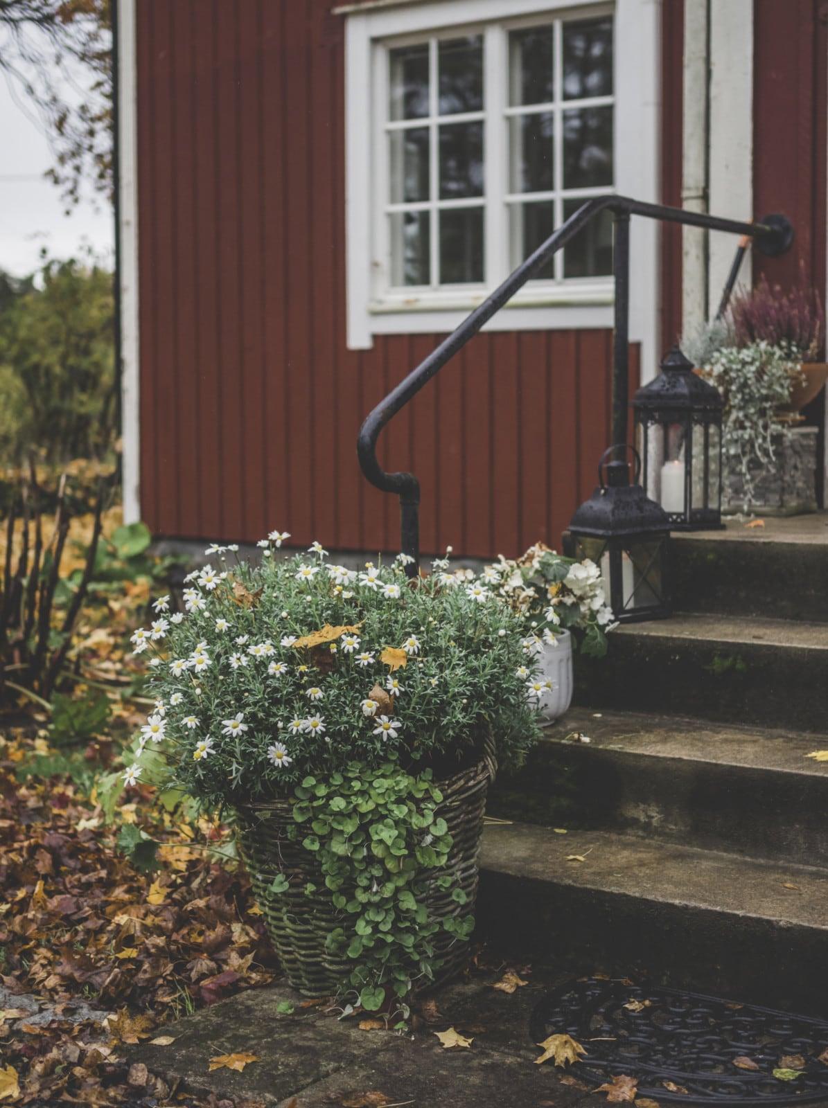 Podzimní inspirace - Obrázek č. 49