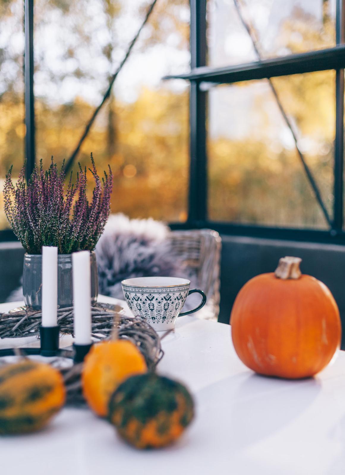 Podzimní inspirace - Obrázek č. 53