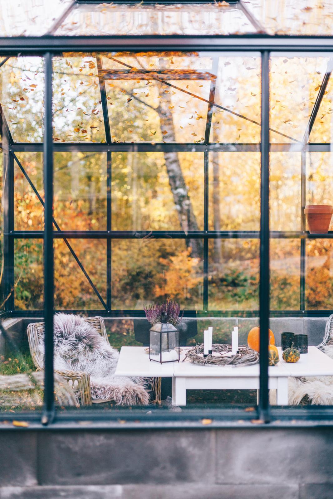 Podzimní inspirace - Obrázek č. 54