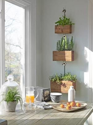 Vychytávky do kuchyne a interiéru - aj bylinky si nájdu svoje miesto v kuchyni