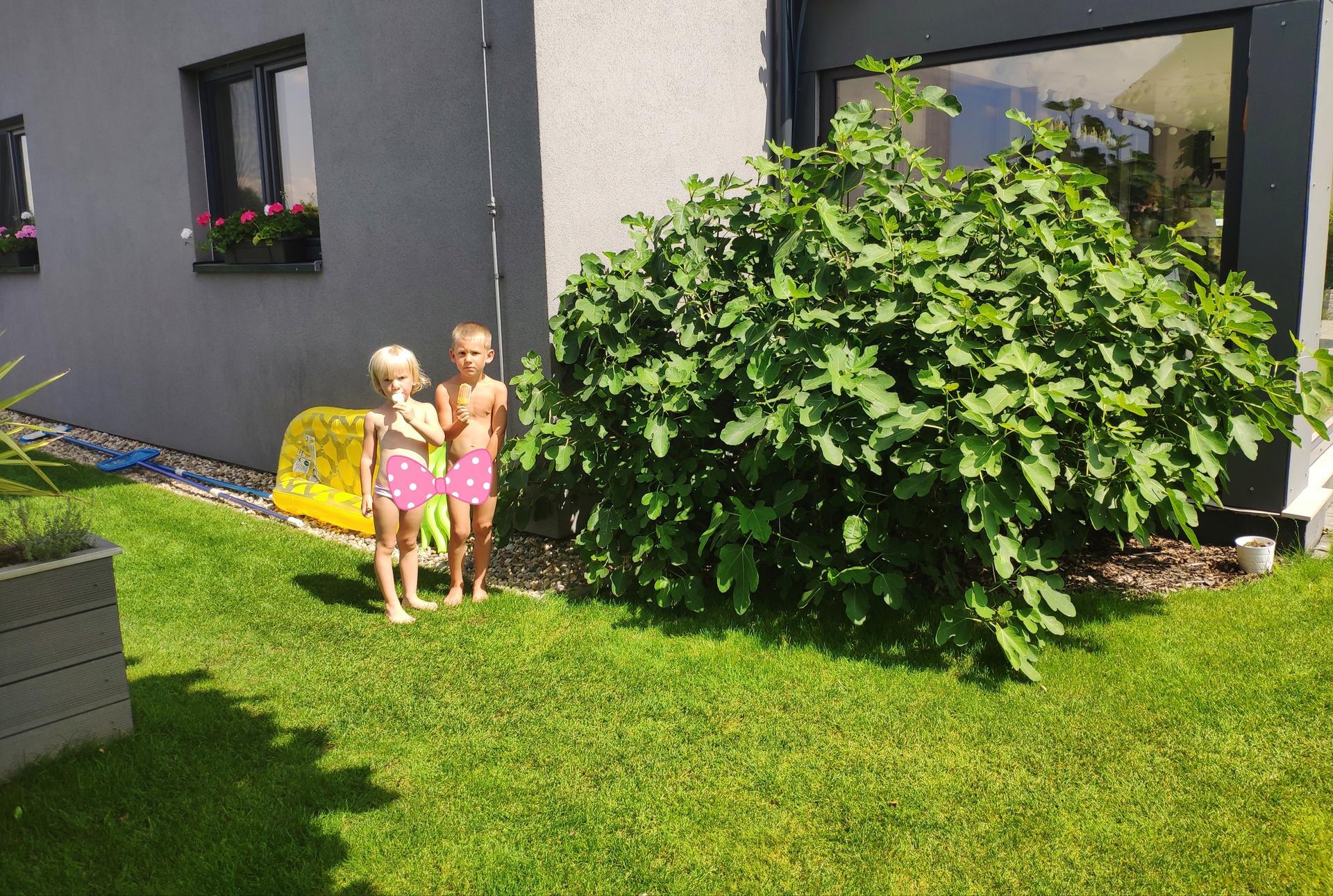 Roste to, děti i rostliny ( ta třetí ještě spinká)... 2016x2020 - Obrázek č. 3