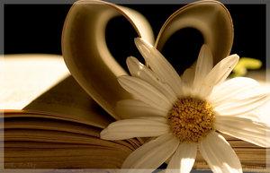 ...20. júna 2009 sa začne písať kniha nášho spoločného života...