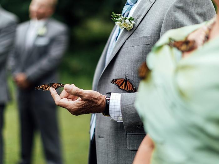Rodina ženícha vypustila počas svadby motýľov na počesť jeho sestry, ktorá zomrela - Obrázok č. 9