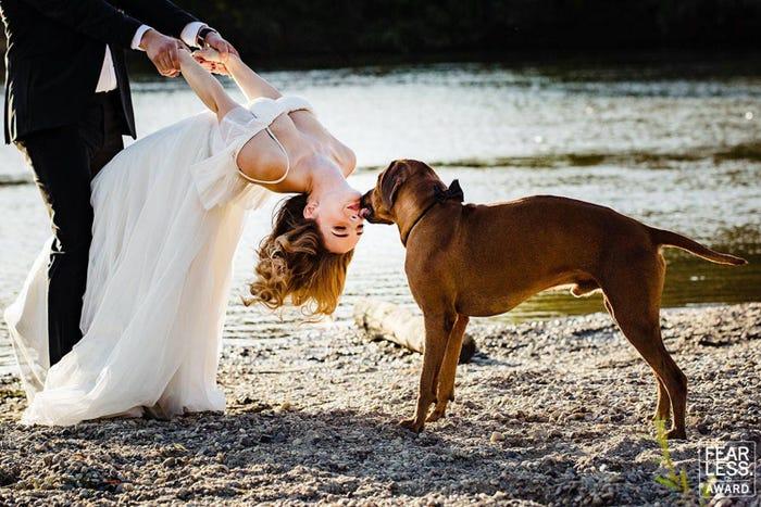 Najlepšie svadobné fotografie za rok 2019 - Obrázok č. 17