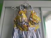 šaty strieborno-žlté motýle,