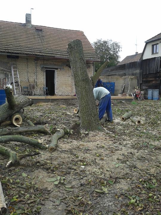 Domeček rekonstruujeme pro rodiče - Kácení ořechu