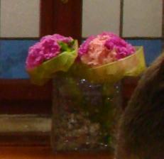 Kyttka pro svědkyně a na házení z květinářství Fantasi