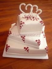 Kombinaci těchto dortů...