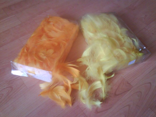 Moja vysnivana... - ..juchuuu oranzova super ziari:)))