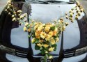 Danka&Matko - ..vyzdoba auta, len bude v bielo-kremovej farbe:o)