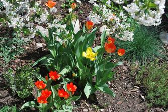 už aby bola jar :-)
