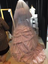 The back of my new dream dress
