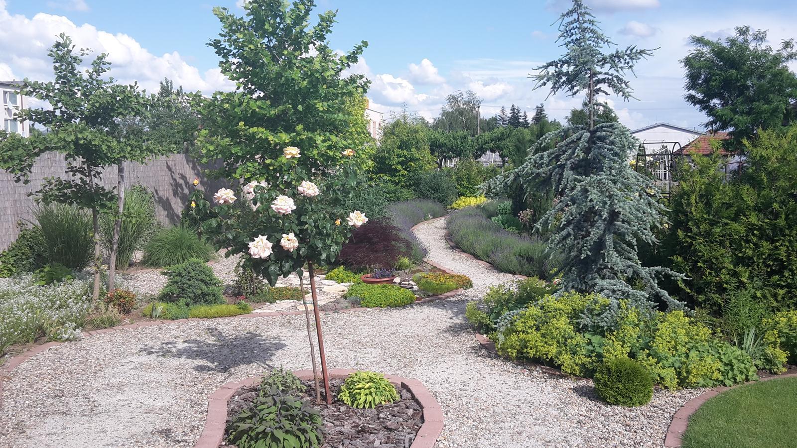 Naša záhrada - Obrázok č. 18