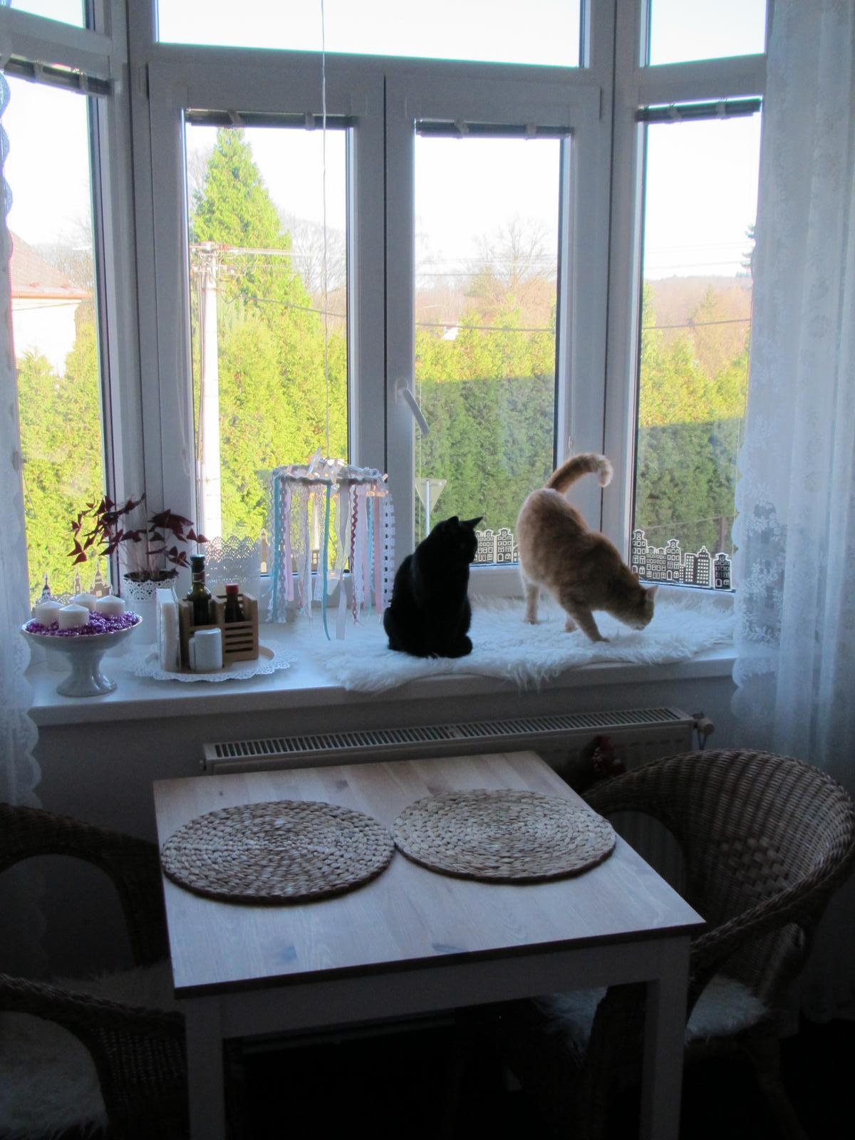 U nás... - Když se topí,kočičky se o toto místo perou...