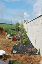 sobotní galeje - 15m záhonu, vyplít, navozit zeminu na srovnání, položení fólie a zasadit rostlinky..
