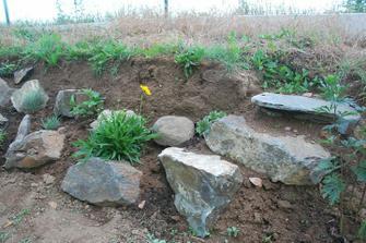 nahoře místo uschlé trávy (postříkané roundupem) přijdou keře